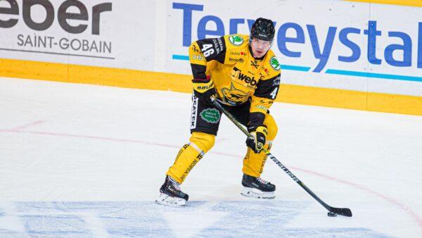SaiPa saapuu Nordikselle – Mitä siitä miettii Teemu Ramstedt?